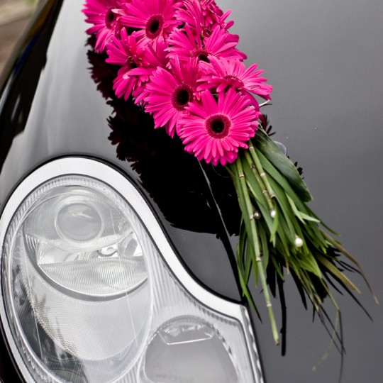 18 Autoschmuck Gerbara in pink