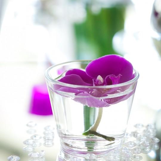 Tischdeko Orchidee in Fuchsia